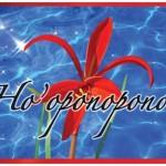 La méthode Ho'oponopono, pourquoi ça marche?