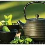 3 astuces et un Dien' Chan' pour éliminer les toxines sans se prendre le chou