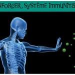 renforcer système immunitaire dien chan2