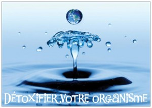 detoxifier organisme  booster metabolisme1jpeg