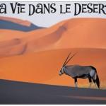 Itinérance intime dans le désert tunisien