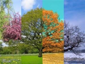 Psychologie des couleurs,réussir sa vie,