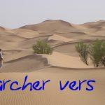 La technique TIPI, aussi utile qu'un aspi-venin dans le désert?